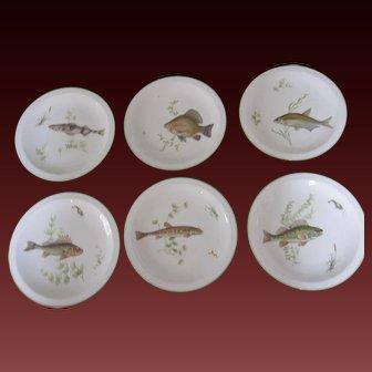 Vintage Fish Porcelain Plates Bavarian Germany Set of Six