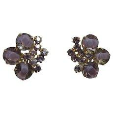 DeLizza and Elster - Juliana Purple Givre' Rhinestone Earrings