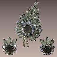 DeLizza & Elster Juliana Grey Rhinestone Spray Brooch and Earrings