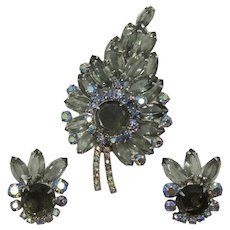 DeLizza & Elster Juliana Grey Rhinestone Spray Brooch and Earrings