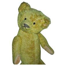 CHARMING Early American Made Teddy Bear c. 1915