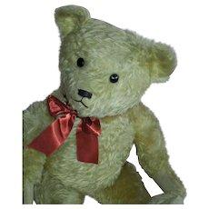 """WONDERFUL 22"""" Old Teddy Bear"""