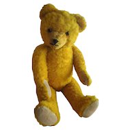 "CUTE 23"" Bright Golden Old Teddy Bear"