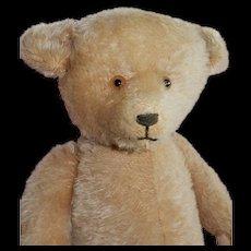 "BEAUTIFUL Beige 21"" English Mohair Teddy Bear"