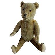 Vintage Mohair Teddy Bear c. 1930's