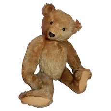 "DAPPER  10"" Steiff Teddy Bear c.1910-1915"