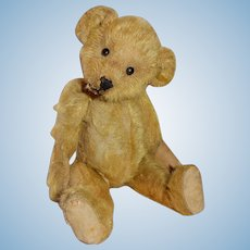 "ADORABLE 12"" Early Mohair Teddy Bear"