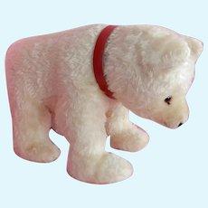 DELIGHTFUL Vintage Steiff Polar Bear 1950-60's