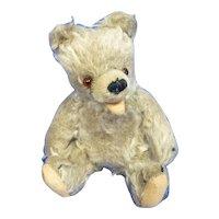 Very Old Mohair Zotty Teddy Bear