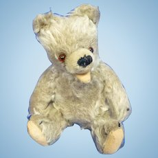 Very Old Mohair Zotty Teddy Bear
