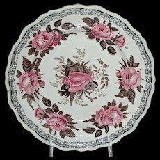 "Bi-Color Staffordshire ""Moss Rose"" Plate, Jackson Warranted"