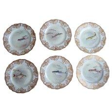 Prestigious Set ~ Antique Fish Plates ~ Artist Signed!