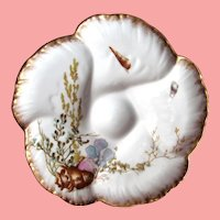Antique French Oyster Plate ~ Limoges ~ Sea Life