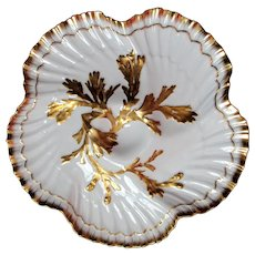 Antique Oyster Plate ~ Tiffany and Company