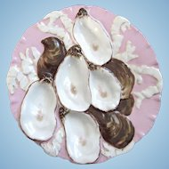 Antique Oyster Plate ~ 'In The Pink' Turkey!