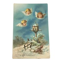 Embossed Christmas Postcard Winged Cherubs 1907