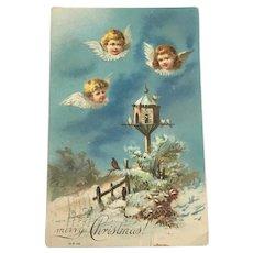 Embossed Christmas Postcard Winged Cherubs 1907