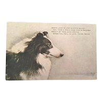 Postcard Border Collie Think Twice Before Your Fall In Love