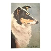 Postcard Rough Collie Loughton Lenore Bavaria Series 171