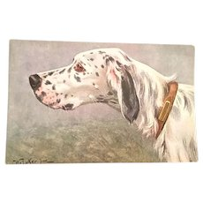 Postcard English Setter Mallwyd Bragg Bavaria Series 171
