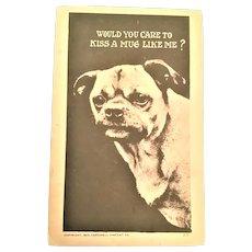 Postcard Pug Dog Would You Care To Kiss A Mug Like Me? 1910