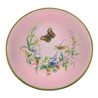 Hand Painted Plate Butterfly and Dragonfly in Wildflowers c.1880
