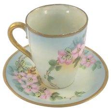 German Porcelain Cup & Saucer Pink Wild Roses