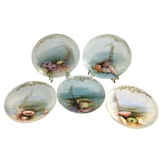 Haviland Limoges Set of 5 Seafood Plates Urchins Starfish and Shells