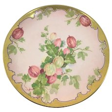 Victorian Plate Chinese Lantern Plant