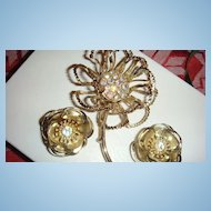 Large Flower Brooch & Earrings With Aurora Borealis Stones Marked
