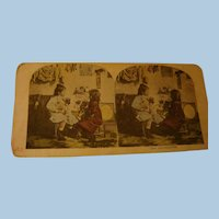 Tinted Stereoview Stereo View Card Little Girls, Dog and Cat The Introduction