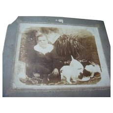 Young Victorian Boy and His Puppies Cabinet Card Photo