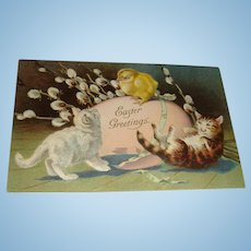 Unused Early Embossed Early Easter Postcard Playful Kittens, Cats, Chick, Egg, Cotton