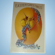 Heavily Embossed Easter Postcard Two Baby Chicks Emerge from Egg, Purple Violets or Forget Me Nots