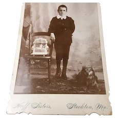 Antique  Photo Boy and His Pets Dog and Bird Cabinet Card Stockton, MO.