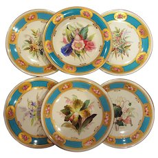 Six Hand Painted Royal Worcester for Tiffany Botanical Plates