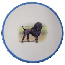 TCHOTCHKE:  Old Plate with Vintage Poodle Graphic