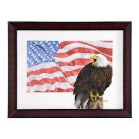 Barron Postmus Bald Eagle & Flag