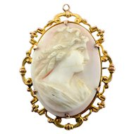 Conch Shell Cameo Pin or Pendant