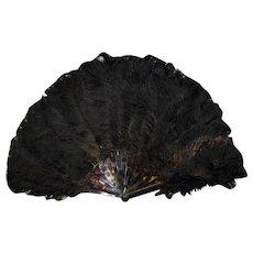 Antique Victorian Ostrich Feather Fan Circa 1880