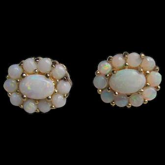 Vintage 14K Gold Opal Earrings Circa 1970