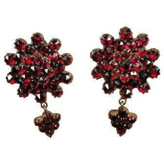 Victorian Bohemian Garnet Earrings  Antique