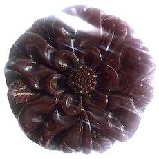 Bakelite Large Carved Brooch in Transparent Cranberry Juice