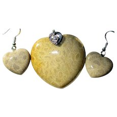 Coral Fossil Pendant/Earrings