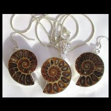 Ammonite Necklace/Earring Set/Sterling Chain