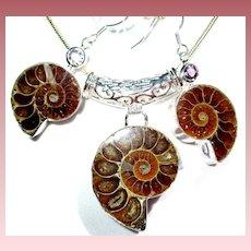 Ammonite Pendant/Earring Set