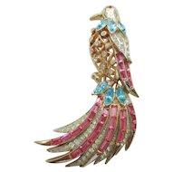 Coro Craft Bird of Paradise Pin - Vintage 1951 Adolph Katz Design - Book Piece