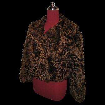 Curly Brown Scottish Lamb jacket / waist length - beautiful and rare fur