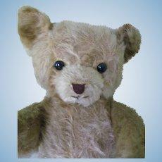 Old Golden Mohair Bear
