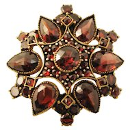 Victorian Bohemian Garnet Pin/Brooch